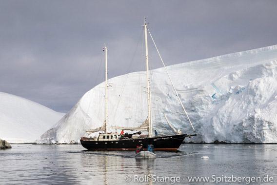 Grönland: unter Segeln im Scoresbysund 2019