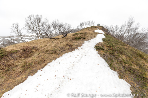 Snow fields, Stokmarknes, Vesterålen