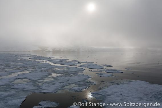 Treibeis in den Fjorden in Spitzbergen