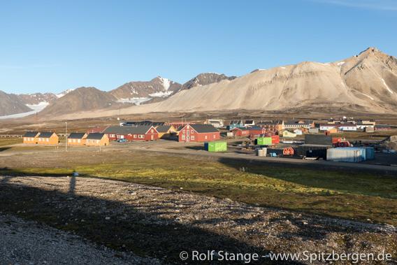 Ny-Ålesund: Resistenzgene in Bakterien nachgewiesen
