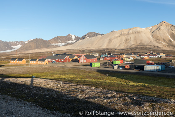 Ny-Ålesund, Spitsbergen: multidrug resistant bacteria found