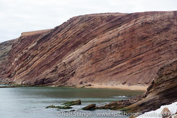 Konglomerater og sandstein fra Karbontiden ved Kapp Harry, Bjørnøya