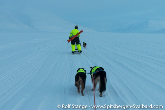 With ski and dogs in Adventdalen