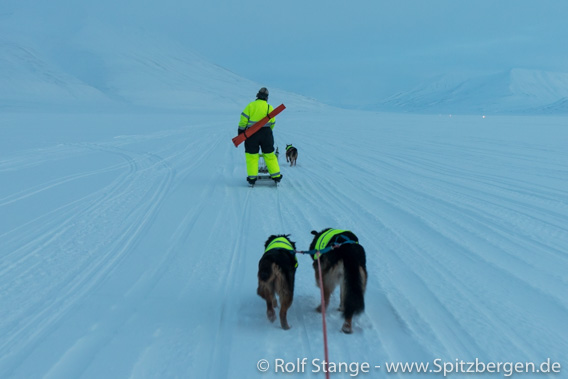 Mit Ski und Hund im Adventdalen