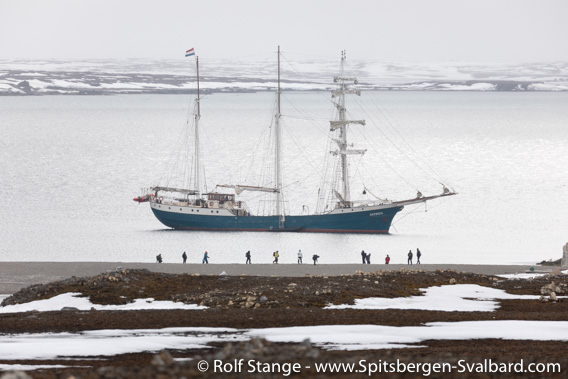 Arctic under Sail 2019 - triplogs, photos