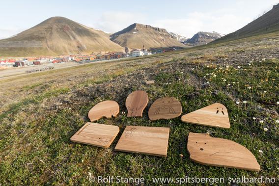 Svalbard skjærefjøl