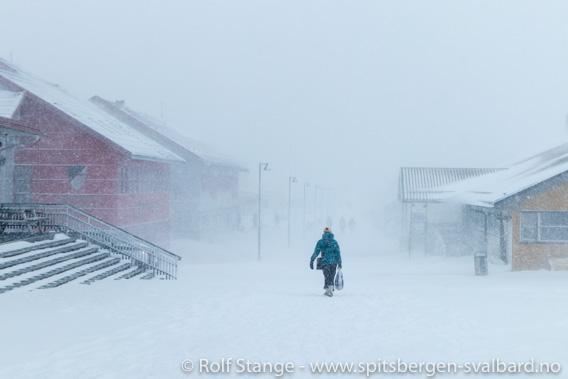 Lokalstyrvalg Longyearbyen