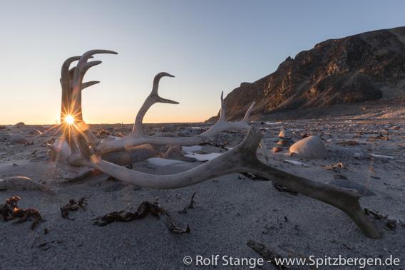 Arktische Landschaft und Licht: Spitzbergen im September