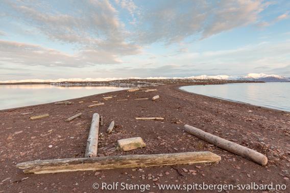 Liefdefjord fuglereservat: Andøyane