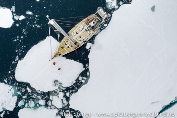 Svalbard med SY Arctica II: kansellert pga korona