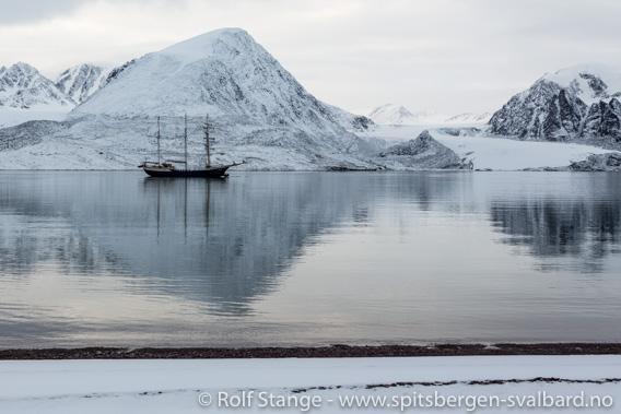 Korona-viruset, Svalbard