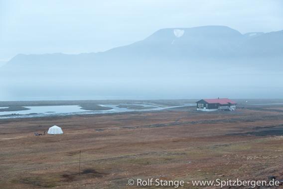 Mann von Eisbär beim Longyearbyen Campingplatz getötet