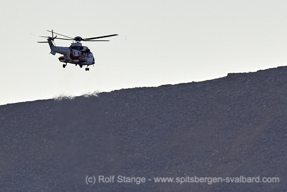 Polar bears near Longyearbyen: helicopter