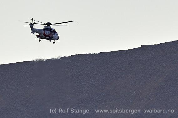 Isbjørner ved Longyearbyen: Sysselmannen med helikopter