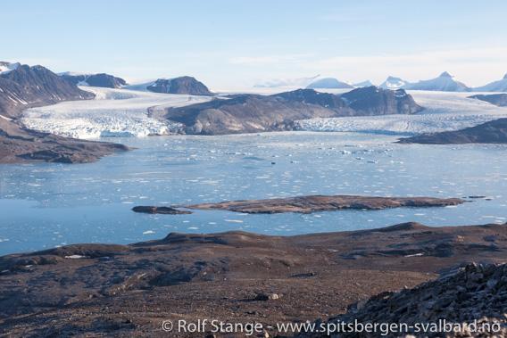 Utsikt Kongsfjorden