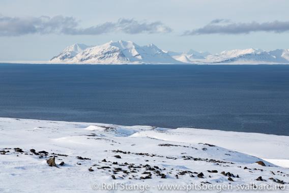 Sentral Isfjord