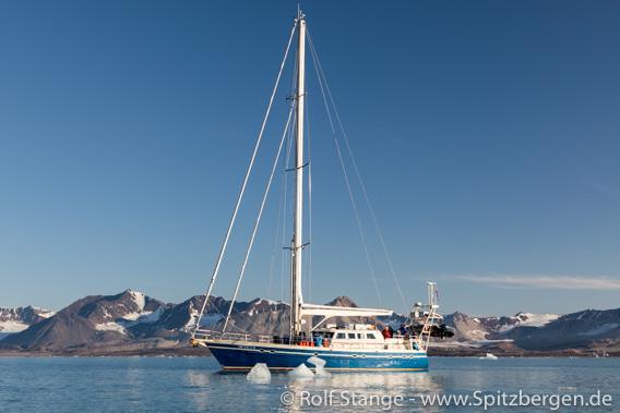 Spitzbergen mit SY Arctica II