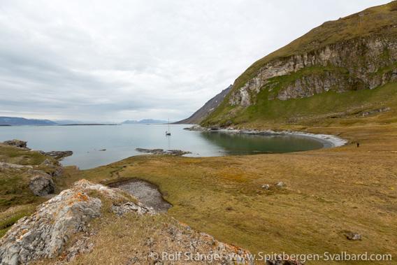 Nordenskiöld Land national park:  bird sanctuary Midterhukssletta