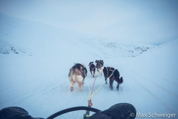 Hilmar Nøis Trail 2021