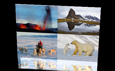arktischer Mittwoch