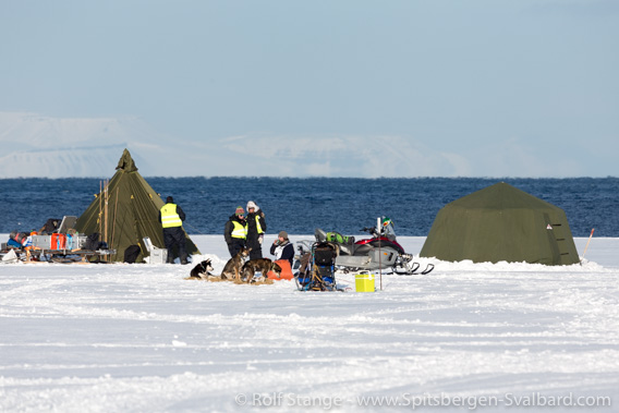Trappers Trail: dog sledge race of the Longyearbyen dog club