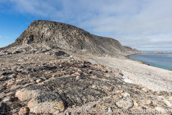 Waldenøya