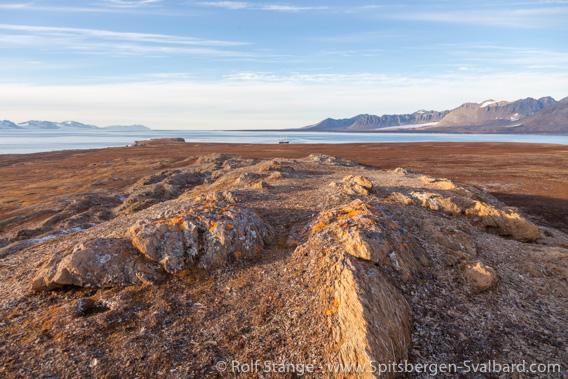 Hermansenøya